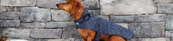 The Savvy Dachshunds Clothing Boutique Review & Giveaway
