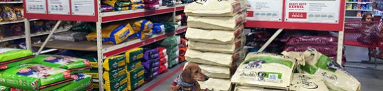 Helping Animal Rescues with #TractorSupply