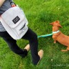 The Dog Walking Bag You Need + A Giveaway