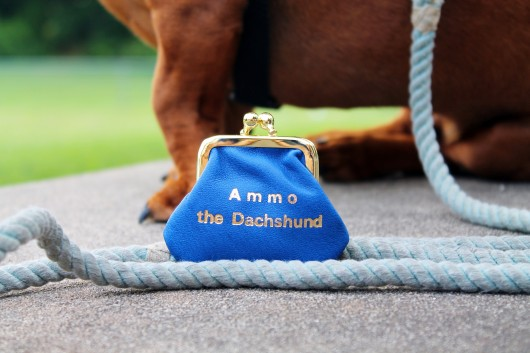 ammo the dachshund therapy dog harness from arja's art