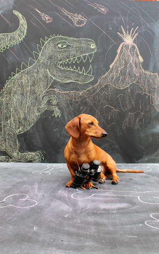 Imagination Hat - Ammo the Dachshund - Dinosaur Land
