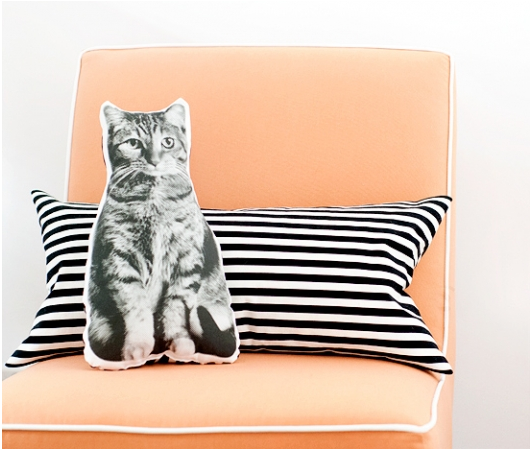 pet pillow from yellow brick home
