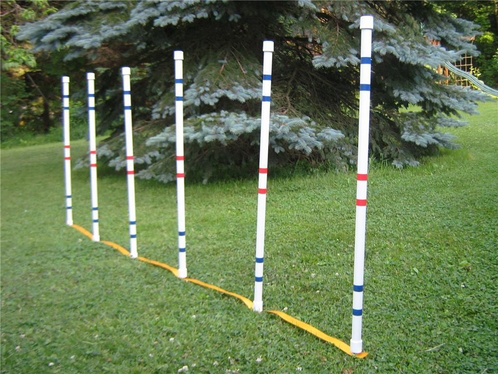 Dog agility shop diy agility equipment supplies ammo the