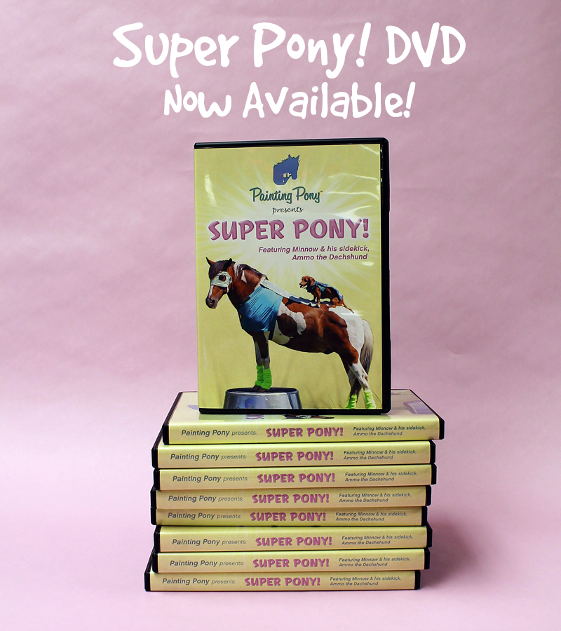 Super Pony! DVD Release