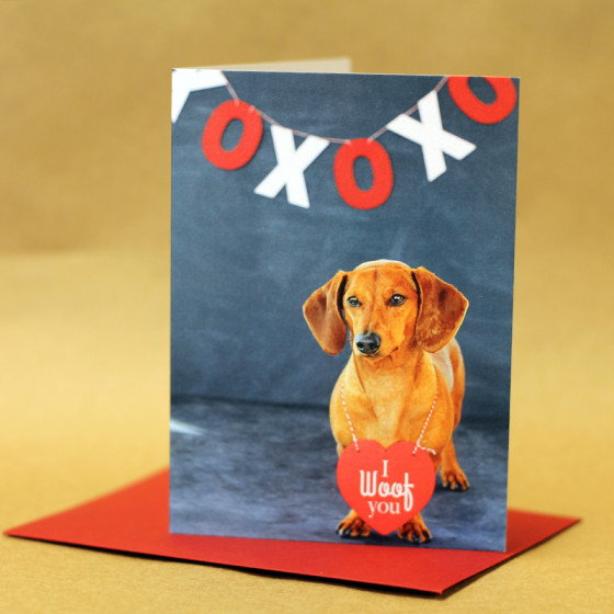 Dachshund Valentine's Day Cards // Flying Hero // Ammo the Dachshund