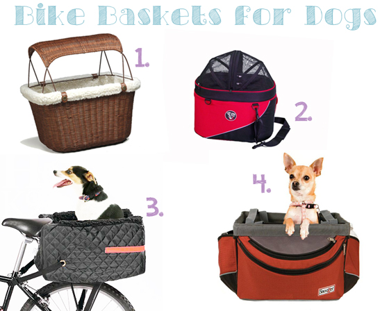 Bikes With Baskets For Dogs Bike Baskets for Dogs Ammo