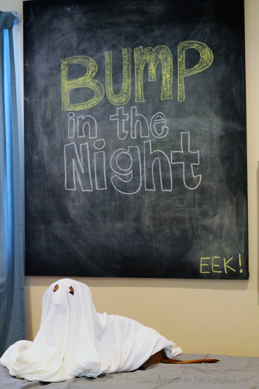 Bump in the Night // Happy Halloween // Ammo the Dachshund