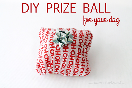 12 Days of Cheer! DIY Easy Prize Ball for your Pet // Ammo the Dachshund