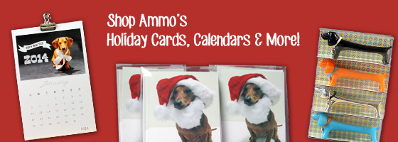 Shop with Ammo // Flying Hero Etsy Shop