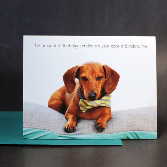 Flying Hero Shop Update // Dachshund Greeting Cards