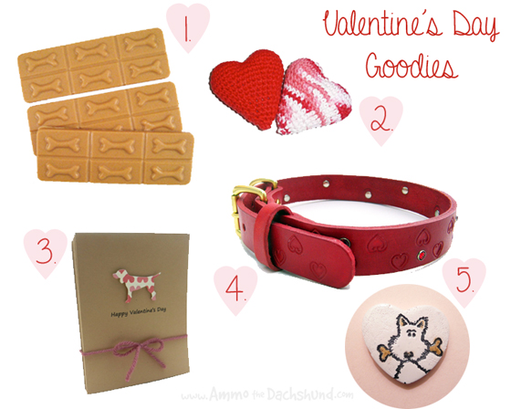 Valentines Day Round-up // Ammo the Dachshund