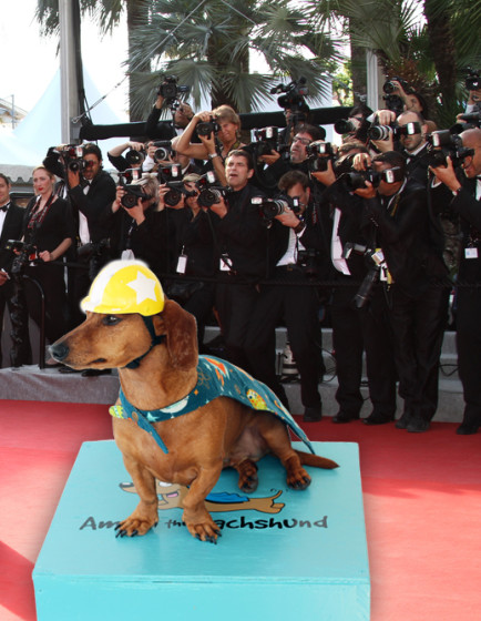 Super Ammo the Dachshund // Oscars