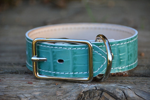 Friday Fetch: Handmade Leather Dog Collars // Ammo the Dachshund
