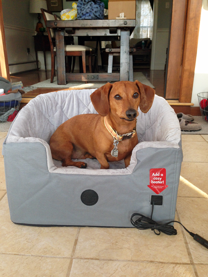 A Car Travel Bed to Keep your Dog Safe | Ammo the Dachshund