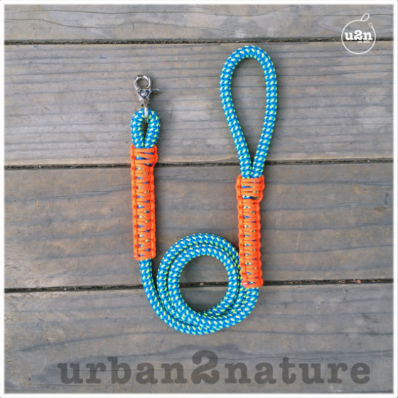 Friday Fetch: Urban Dog Leash // Ammo the Dachshund
