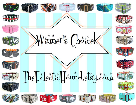 The Eclectic Hound Martingale Review & Giveaway // Ammo the Dachshund
