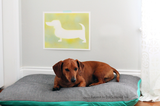 Easy DIY Spray Painted Dog Art // Ammo the Dachshund