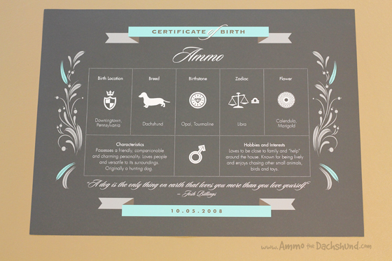 My Happy Park Dog Birth Certificate Review & Giveaway // Ammo the Dachshund