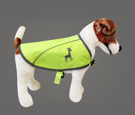 Friday Fetch: Alcott Adventure Gear for Dogs // Ammo the Dachshund