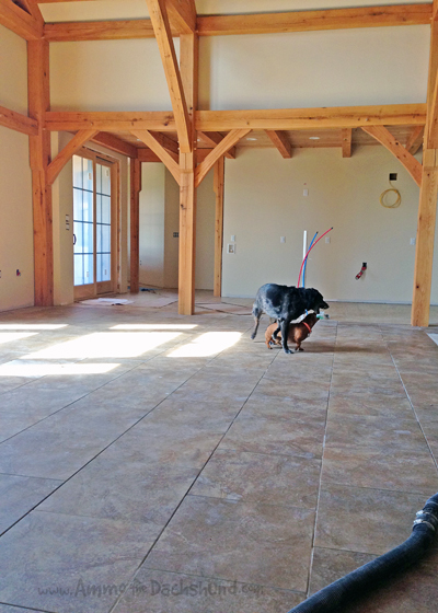 Tiling a Farmhouse // Ammo the Dachshund