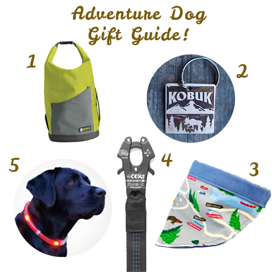 Adventure Dog Gift Guide // Ammo the Dachshund