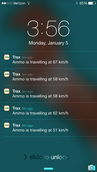 Trax Review - A GPS Tracker for Dogs // Ammo the Dachshund