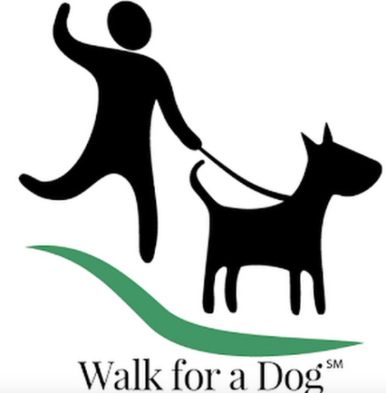 Earn money for rescue dogs by walking your dog // Ammo the Dachshund