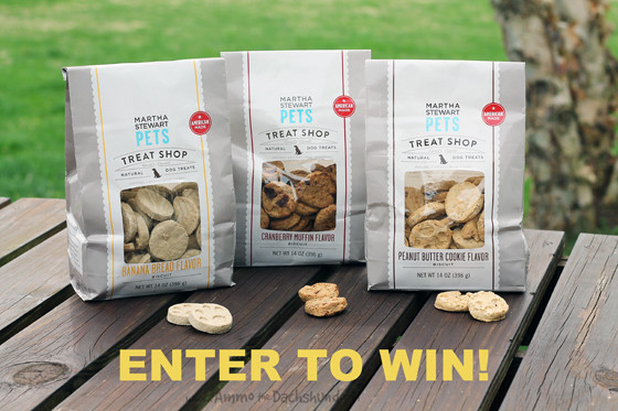 Martha Stewart Pets Natural Treats Review & Giveaway // Ammo the Dachshund