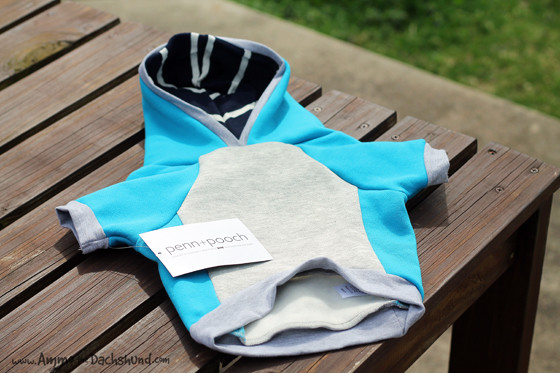 Penn + Pooch Spring Pet Clothing Review & Giveaway // Ammo the Dachshund