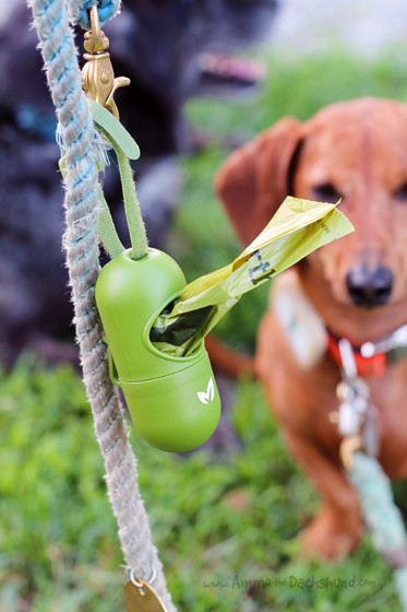 Travel Poop Bags for Dogs from Earth Rated // Ammo the Dachshund