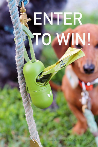 Enter to Win Earth Rated Bags & Dispenser at AmmoTheDachshund.com