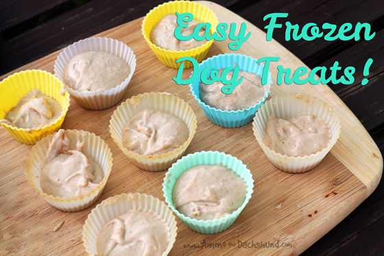 Easy Frozen Dog Treats with Happy Lapper + A Giveaway