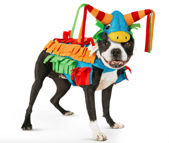 Friday Fetch: 10 Awesome Halloween Costumes for pets